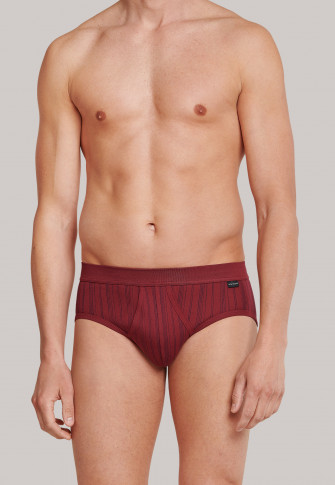 Sports briefs fine rib double pack with fly burgundy striped - original Classics